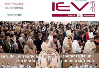 IEV 331