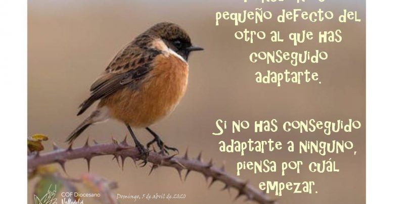"""#ParejasConfinadas: """"Piensa en ese pequeño defecto al que has conseguido adaptarte"""""""