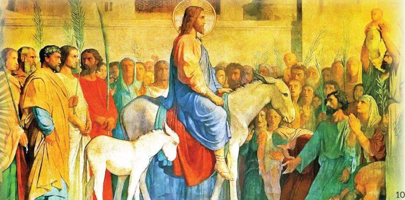 Subsidio litúrgico para hoy, Domingo de Ramos