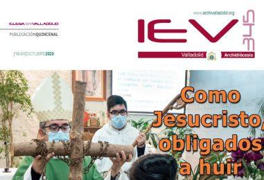 IEV 345